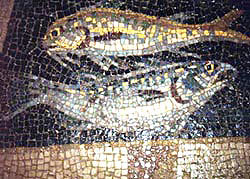 Fish image in a mosaic from the